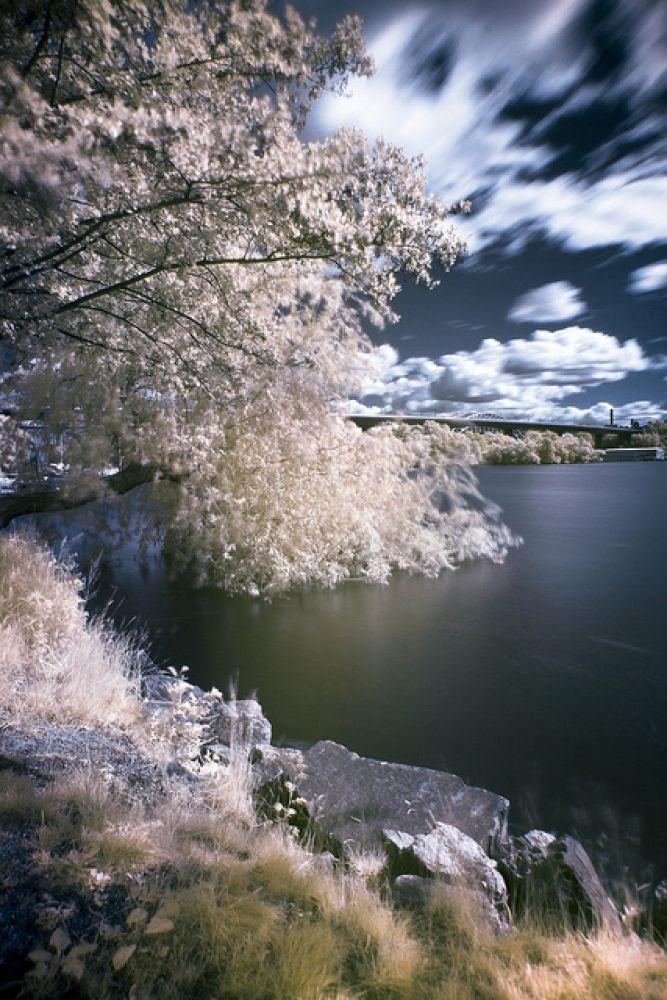 Infrared Photo...Beautiful!