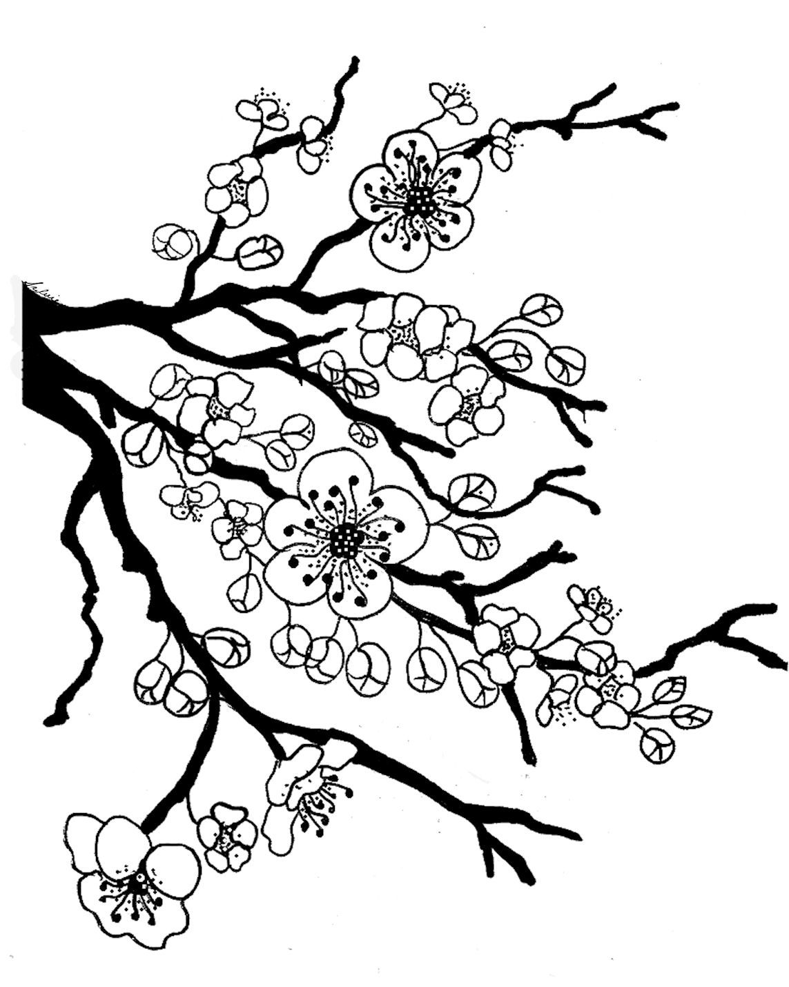 Coloring pages trees and flowers - Cherry Tree Blossom Coloring Page