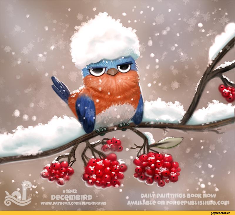 Маркером поздравление, картинки смешные снегири