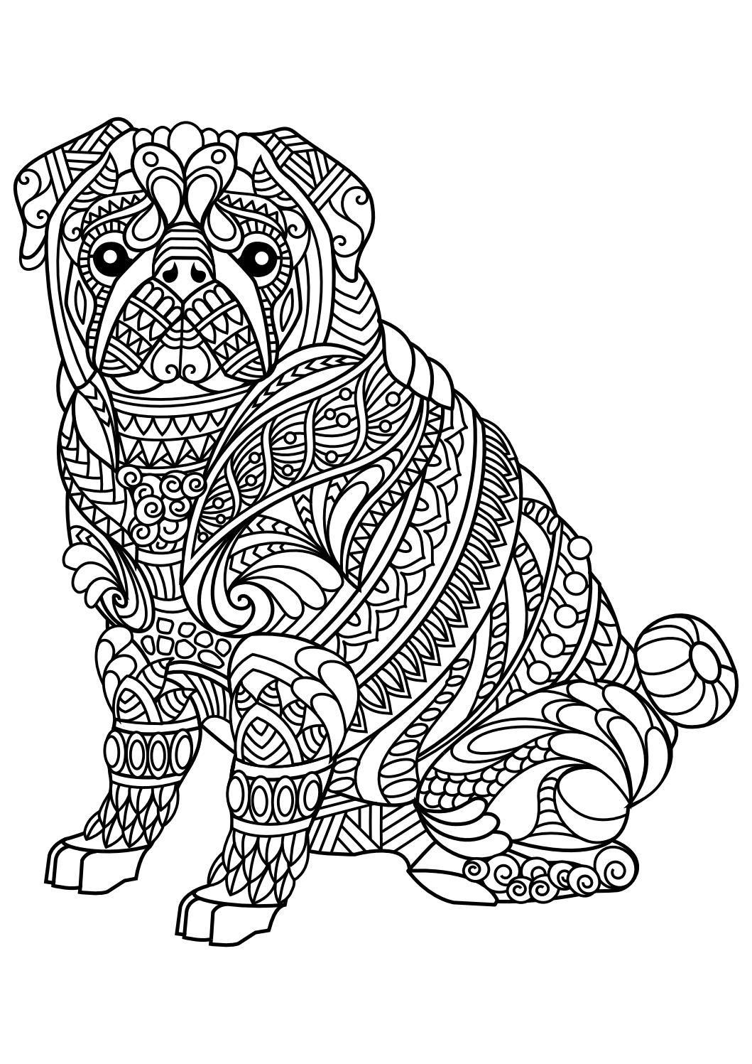 Animal coloring pages pdf coloring pages pinterest kolorowanki