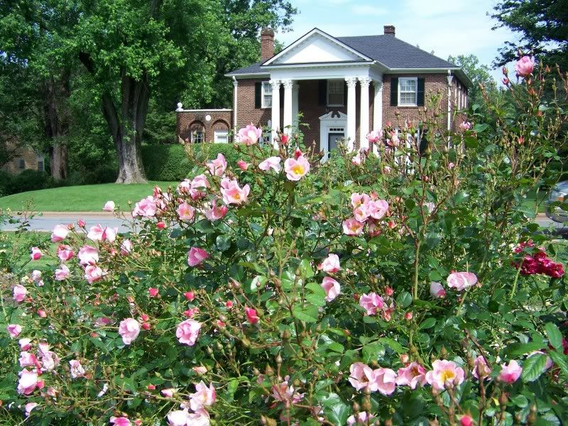 rose rotunda | Asheville neighborhood of the month: I never promised ...