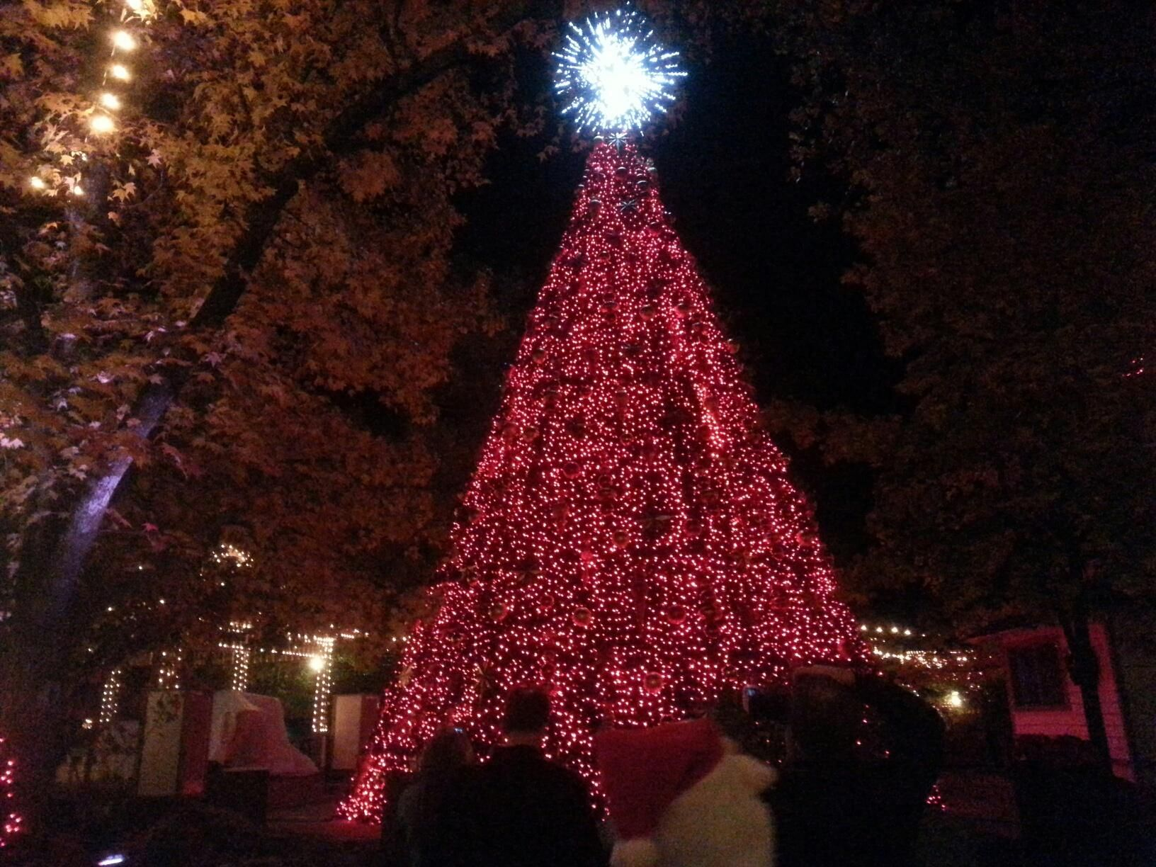 Silver Dollor City Branson at Christmas