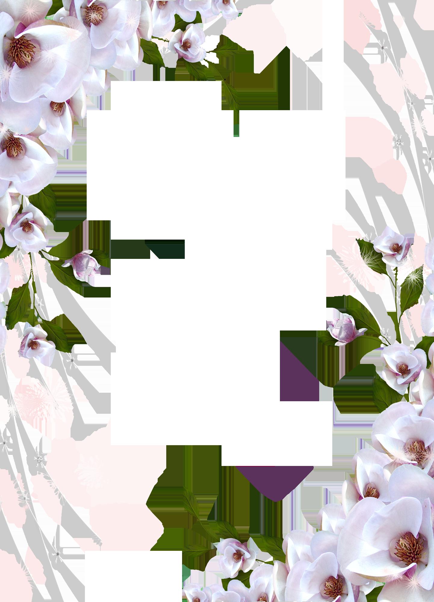 Transparent photo frame beautiful flowers frames and borders transparent photo frame beautiful flowers izmirmasajfo
