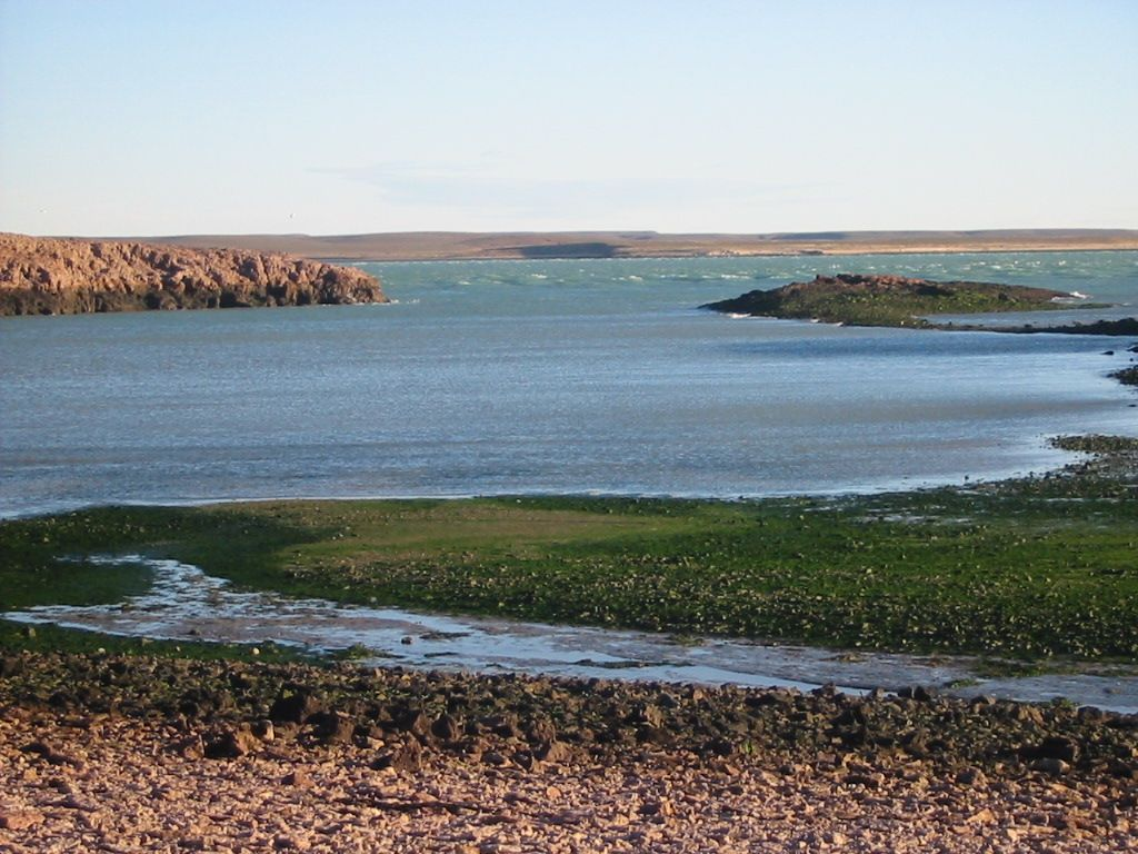 The main attraction of Puerto Deseado is the Ría Deseada nature reserve.