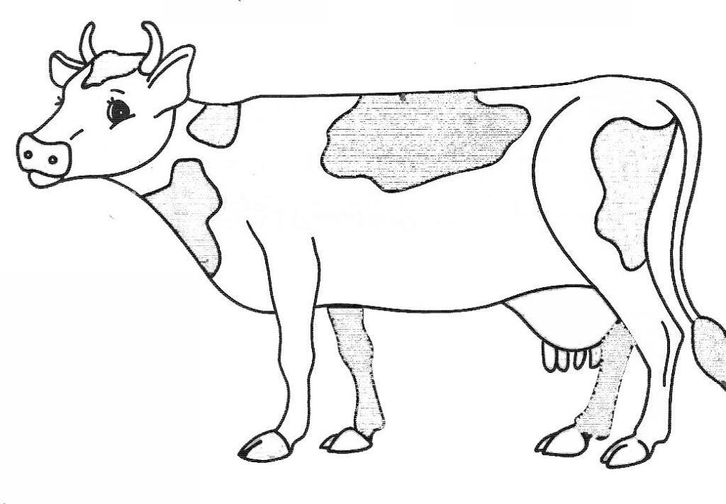 Coloriage vache colorier dessin imprimer classems farm animal coloring pages animal - Dessin d une vache ...