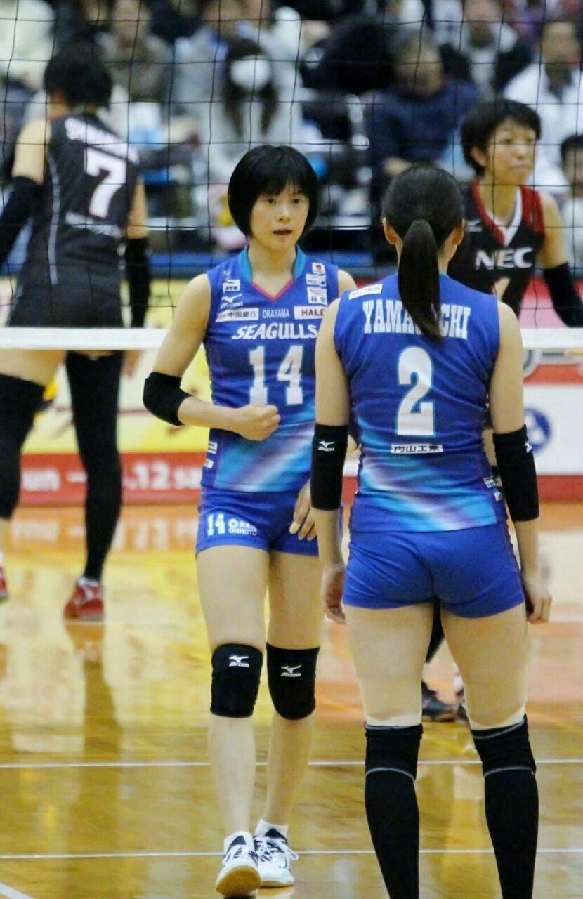 Pin Seet Miyashita Volleyball