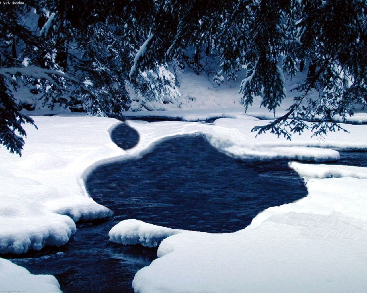 Most Inspiring Wallpaper Mac Winter - edbaa47b172afafd711c577097aac429  Pic_92364.jpg