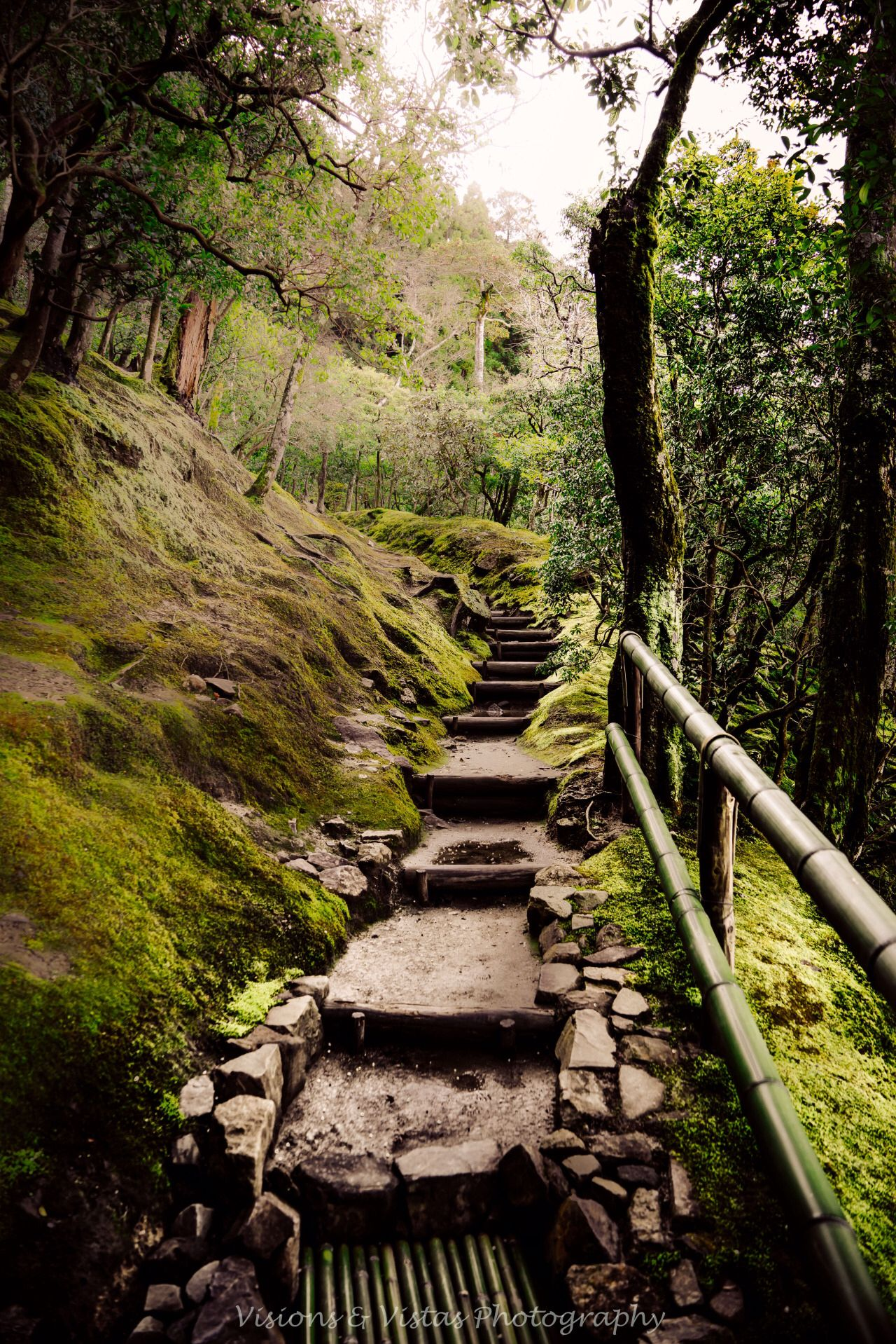 Pin by Kevin Curtin on stone walls   Pinterest   Nature animals ...