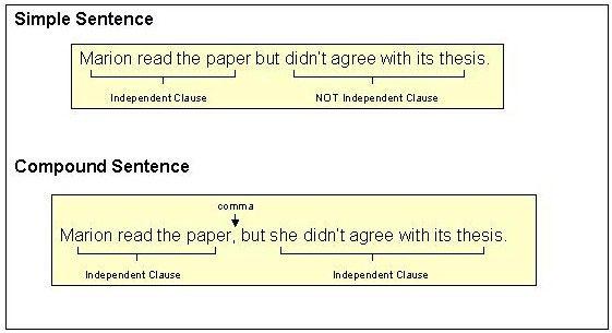 simple sentences vs  compound sentences