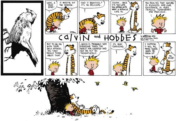 I Suppose It Will Make Sense When We Grow Up Calvin And Hobbes Comics Best Calvin And Hobbes Calvin And Hobbes