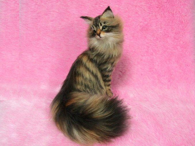 Needle Felted Beautiful Maine Coon: Needle Felt Cat, Needle Felting de LilyNeedleFelting en Etsy https://www.etsy.com/mx/listing/271506016/needle-felted-beautiful-maine-coon