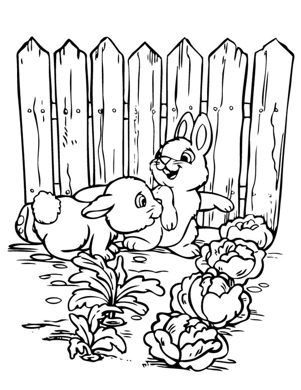 Two Rabbits In Cabbage Garden In Gardening Coloring Pages Bulk Color Coloring Pages Garden Coloring Pages Easter Coloring Pages