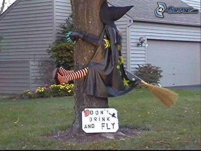 Pin Von Stefanie Schnell Auf Fun Lustige Halloween Halloween Deko Basteln Halloween