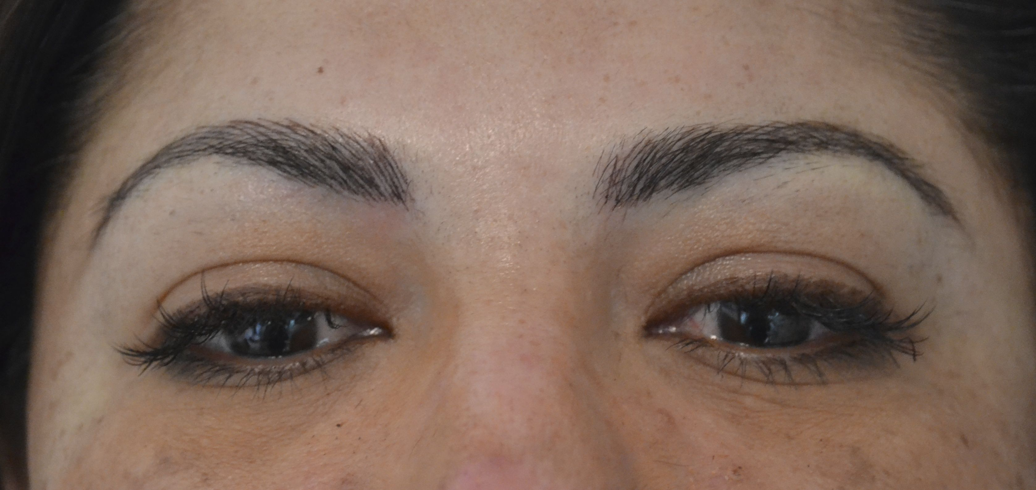 permanent eyebrow color, embroidery hair stroke technique ...