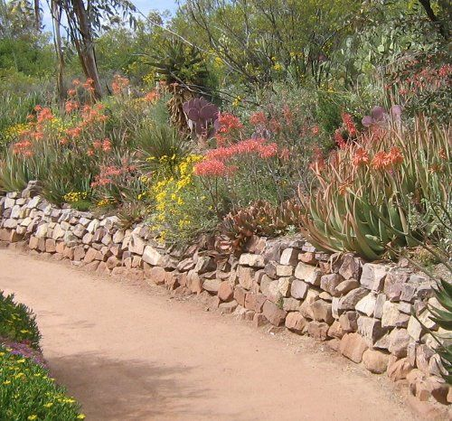 Landscape Design Desert Photos: Mild Terrace Landscaping For An Inclined Front Yard