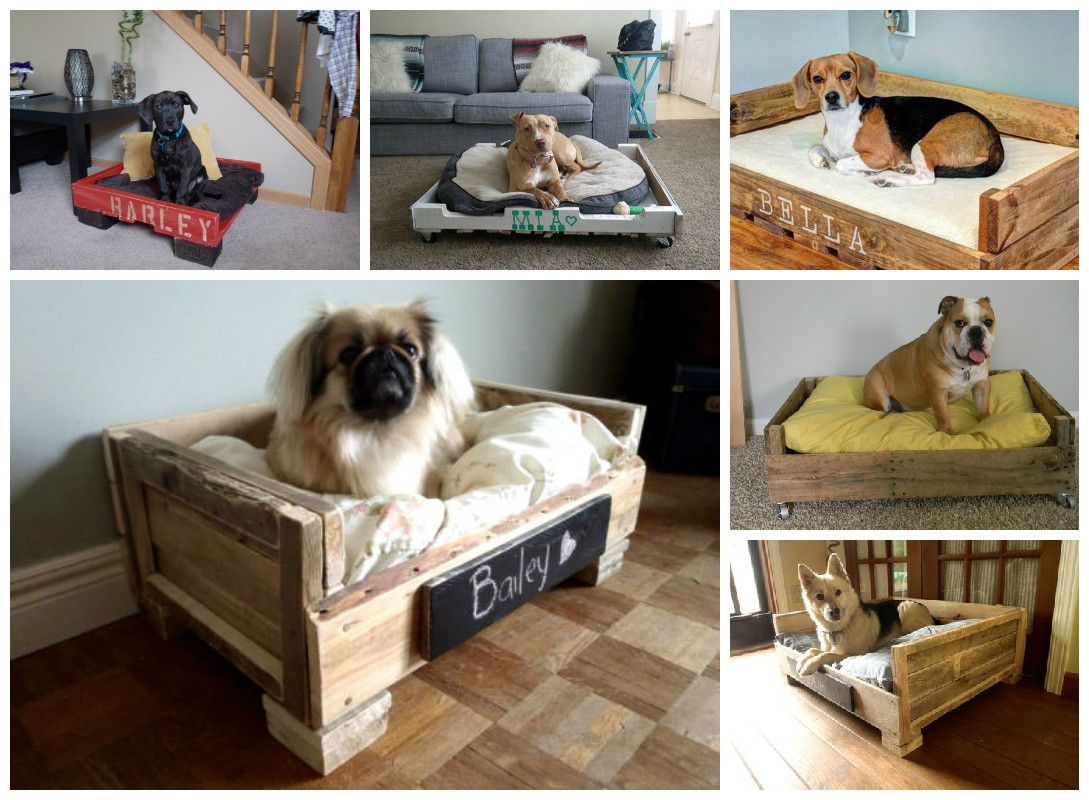 #Bed, #Dog, #Pallet, #Upcycled, #Wood