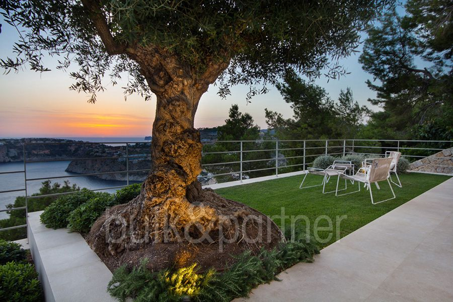 Luxurious villa in finca style in Cala Llamp - ID 5500547 - Real estate is our passion... www.bulk-partner.com  © Photos: mallorco photography www.mallorco.com