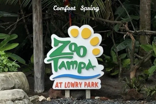 Lowry Park Zoo Christmas 2020 ZooTampa at Lowry Park in 2020 | Winter math activities, Christmas