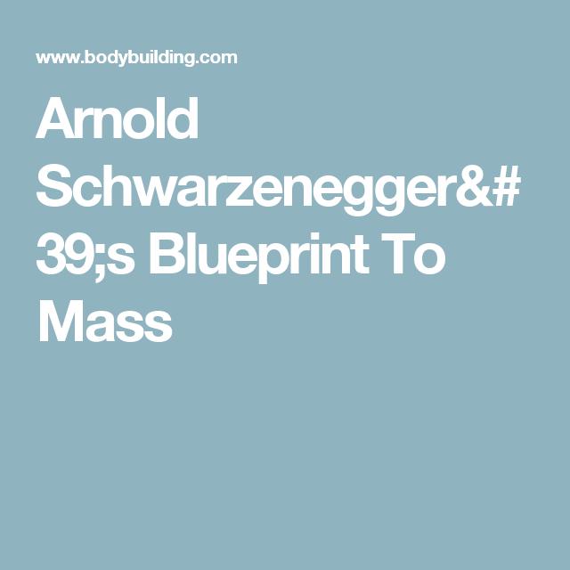 Arnold schwarzeneggers blueprint to mass arnold schwarzenegger arnold schwarzeneggers blueprint to mass malvernweather Gallery