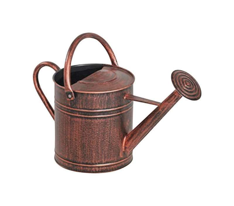 Panacea Brown 2 Gal Metal Watering Can Ace Hardware In 2020 Metal Watering Can Watering Can Watering