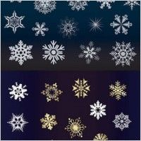 beautiful snowflake background vector illustration