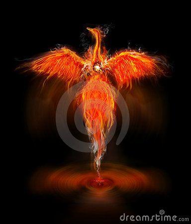 Phoenix Bird Phoenix Wallpaper Phoenix Images Phoenix Bird