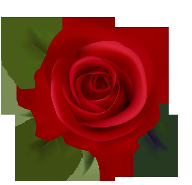 clipart flowers flowers clipart pinterest rose images and flowers rh pinterest com rose flower clip art free rose flower clip art free