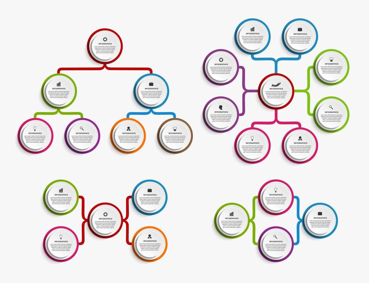 أنواع الهياكل التنظيمية الهيكل التنظيمي استشارات موارد بشرية Organizationaldesign Hrconulting Busine Infographic Design Organization Chart Infographic