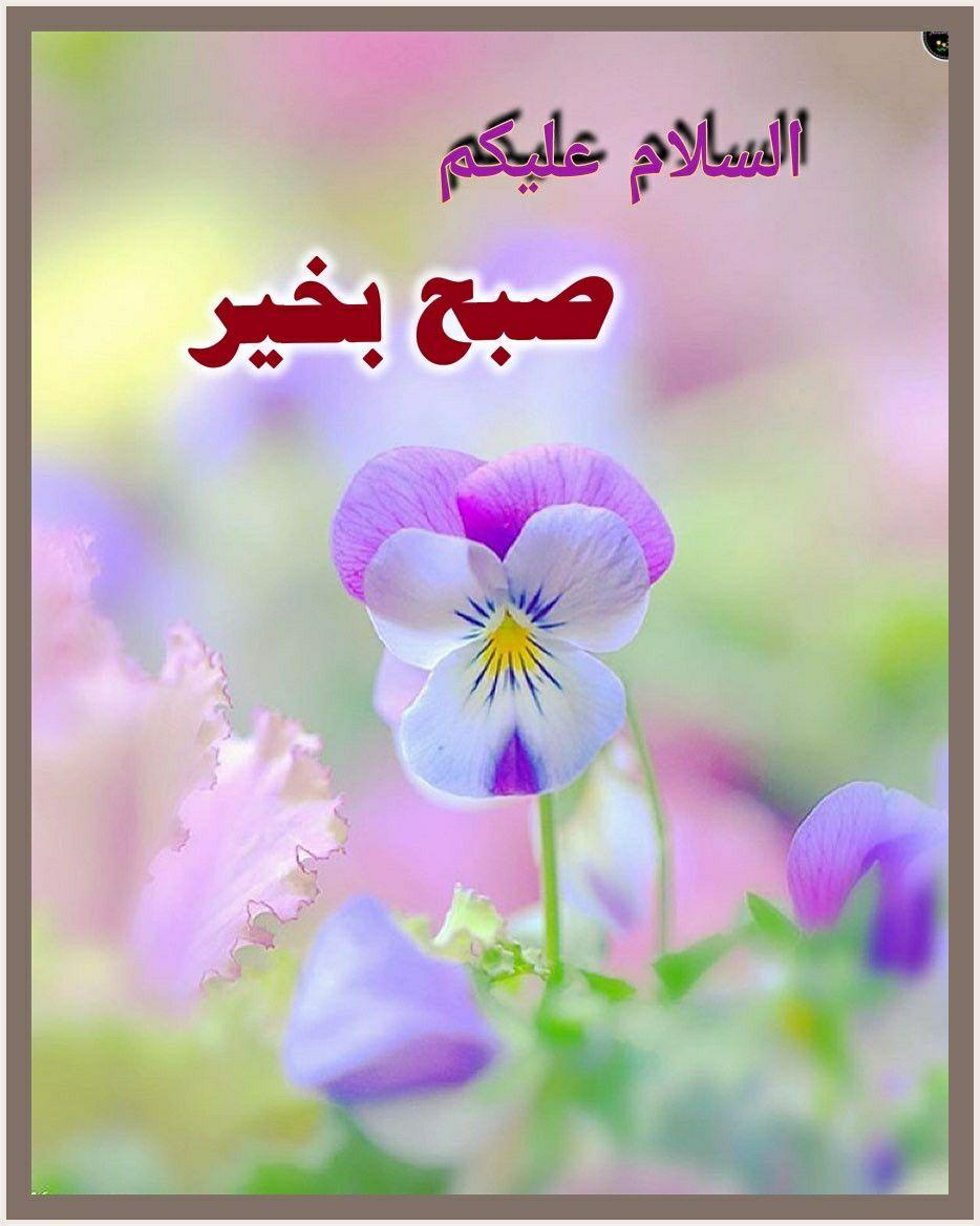 صبح بخیر In 2020 Good Morning Beautiful Good Morning Msg Nature Pictures