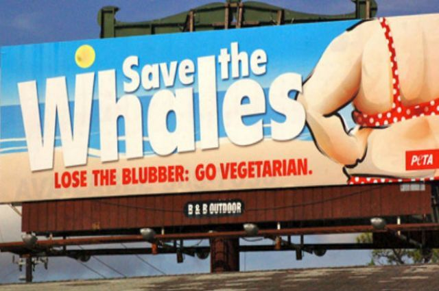 This Here Is A Very Bad Example Of A Billboard
