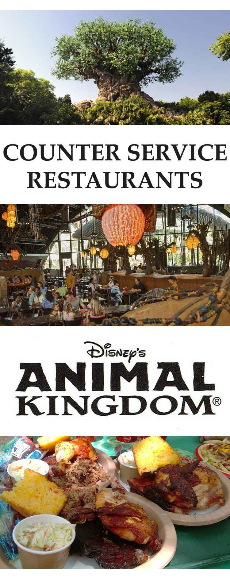 Top 5 Counter Service Restaurants Animal Kingdom Disney