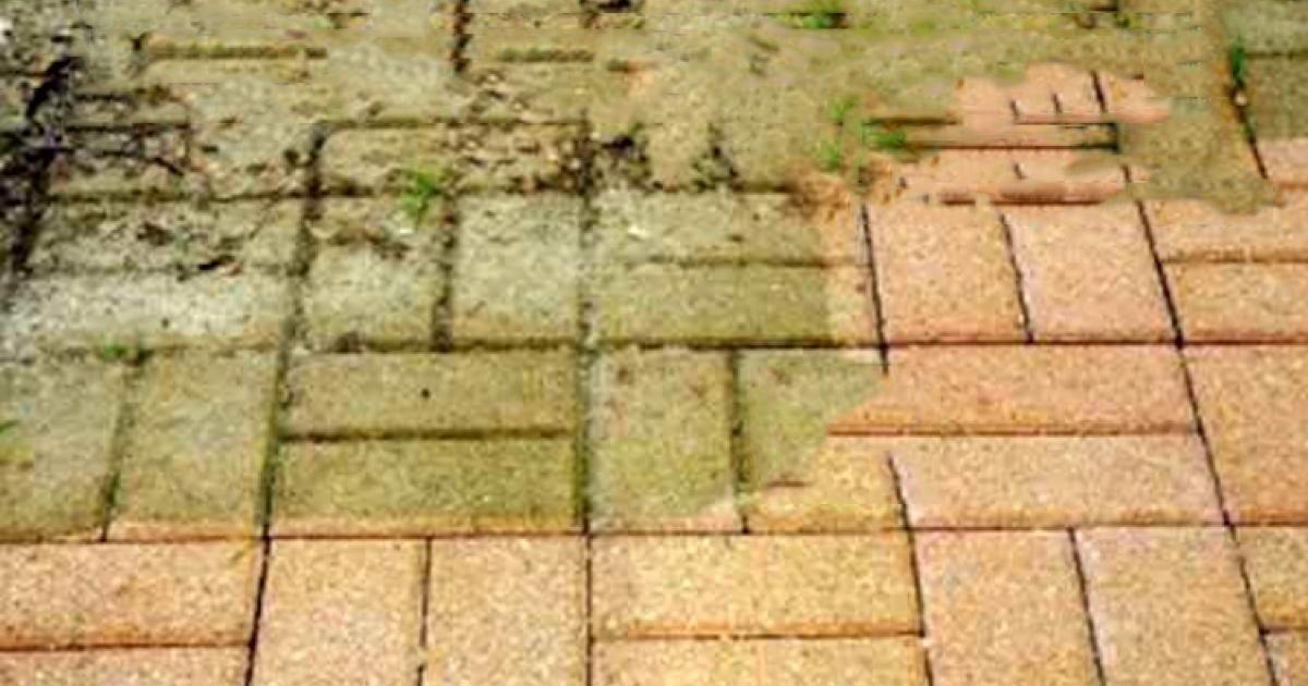 La Mousse A Envahi Votre Terrasse Grace Aux Conseils De Cet Expert Vous La Retirerez En Moins De Deux Natural Cleaning Products Outdoor Decor Terrain