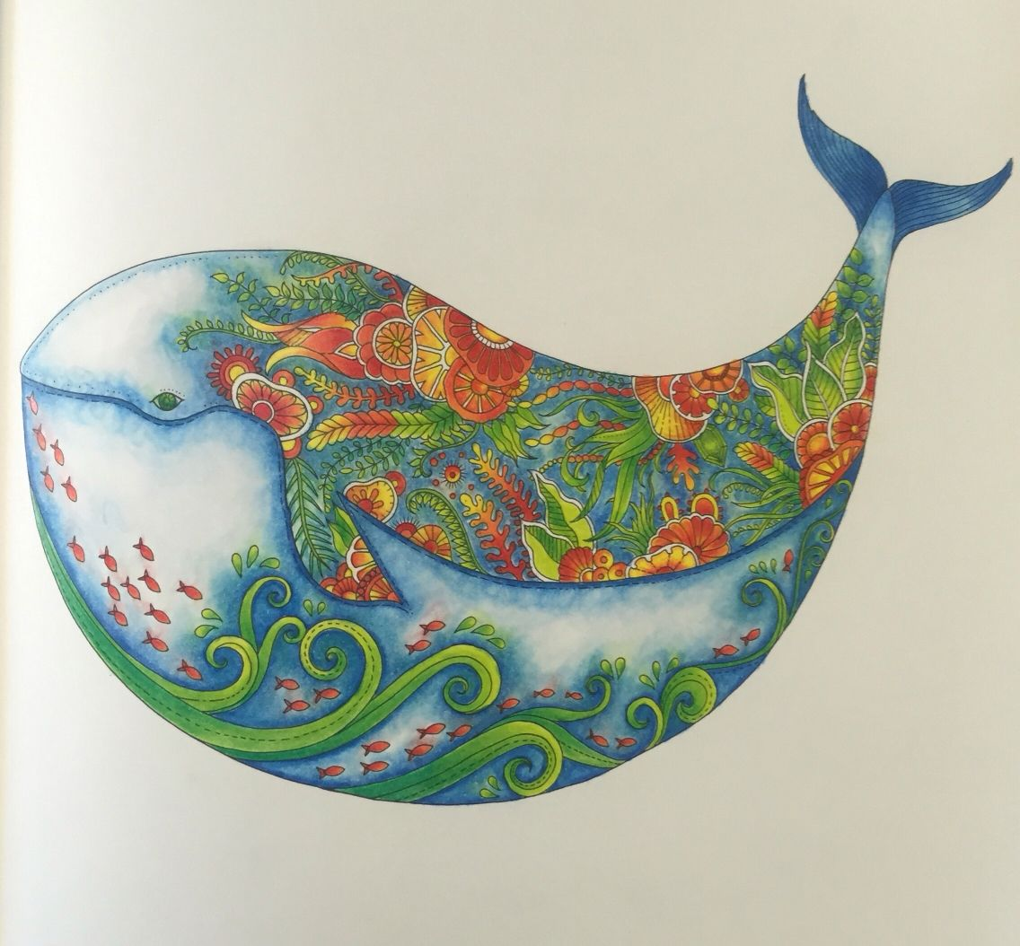 Whale From Lost Ocean Johanna Basford Coloured In Prismacolour Having A Whale Of A Time Johanna Basford Lost Ocean Johanna Basford Basford