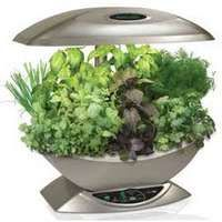 Kitchen Counter Herb Garden Kit Ideas