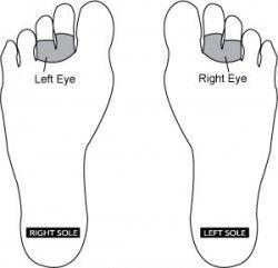 Reflexology Point for Eyes