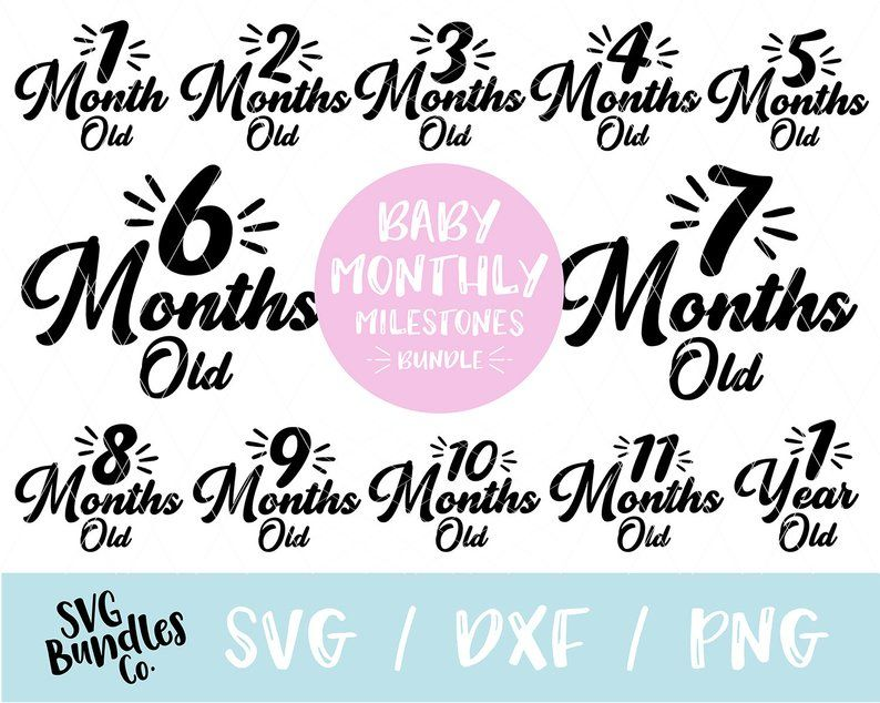 Instant Svg Dxf Png Baby Monthly Milestones Baby Svg Baby Etsy Baby Month By Month Baby Monthly Milestones Baby Svg