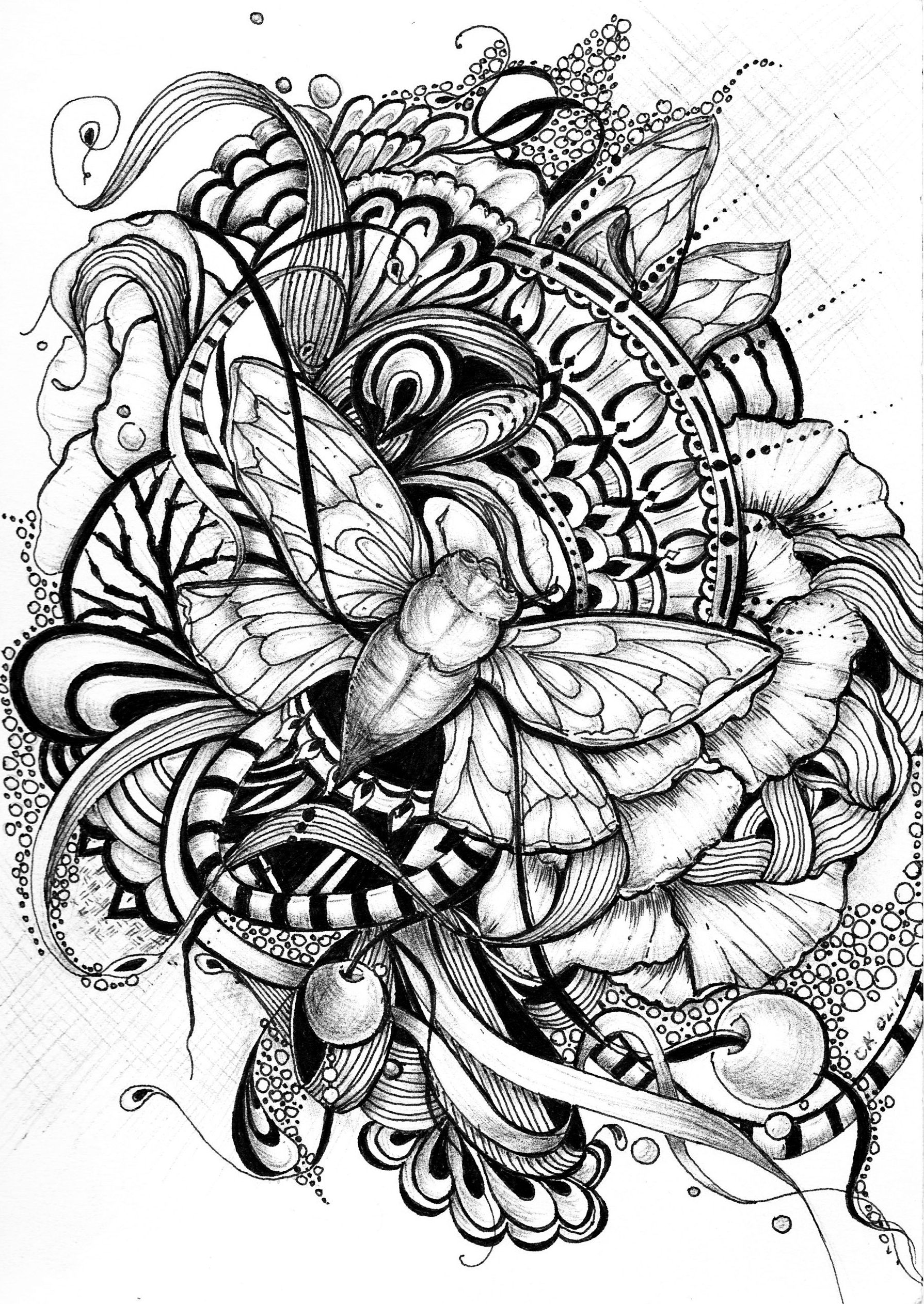 Cicada Zentangle Zentangle Coloring Pages Adult Coloring Pages