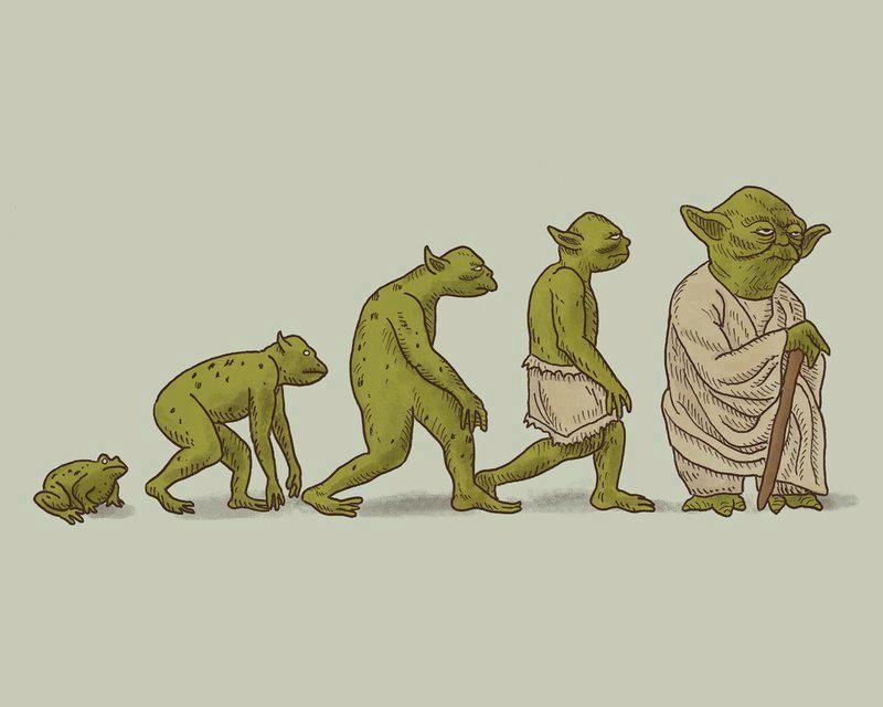 progre yoda
