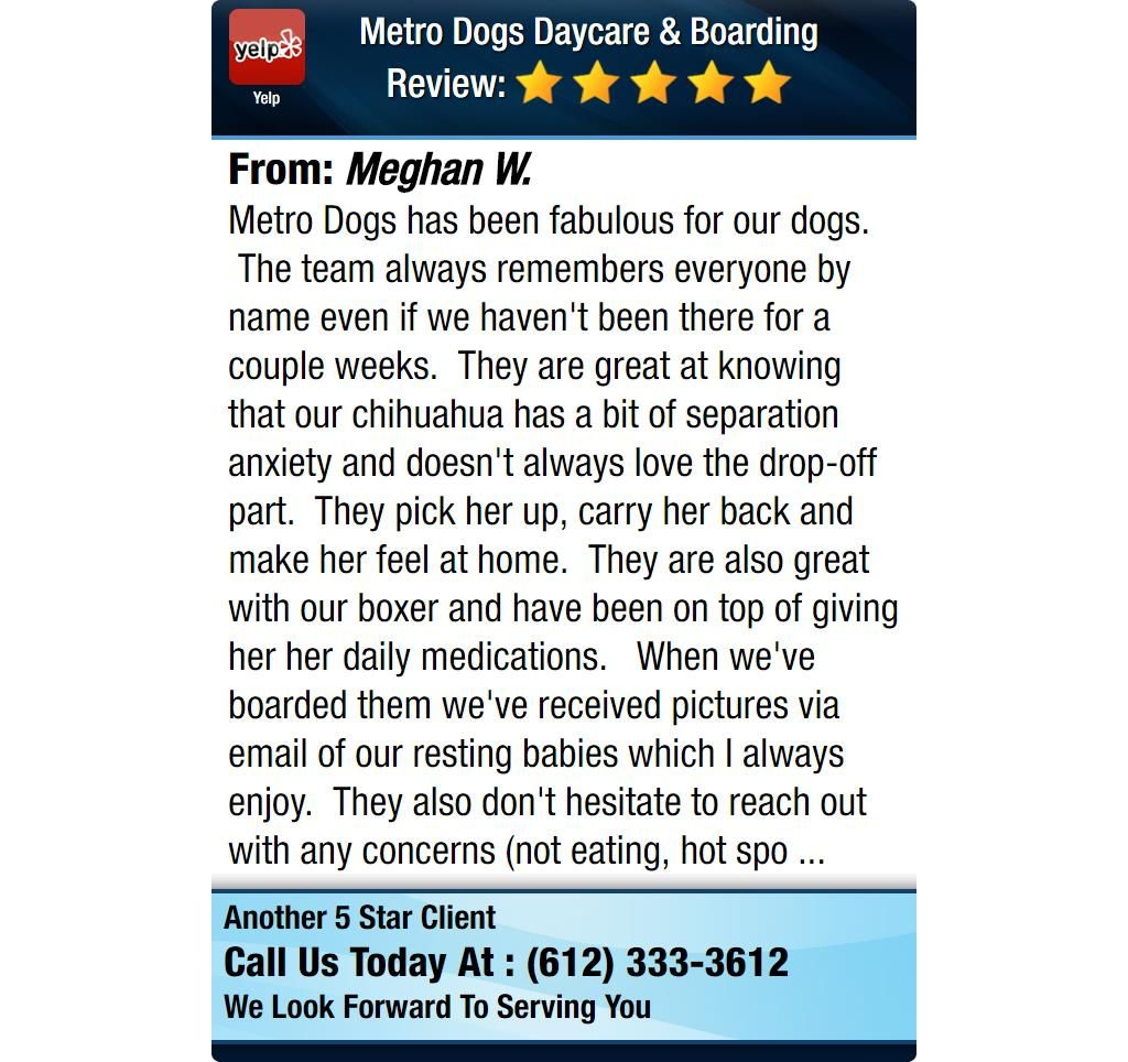 Metro Dogs has been fabulous for our dogs. The team always remembers everyone by name...