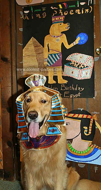 Image From Http Coolest Parties Shippony Com Images Party Tales 2012 Phoenixbysign Jpg Doggy Halloween Costumes Egyptian