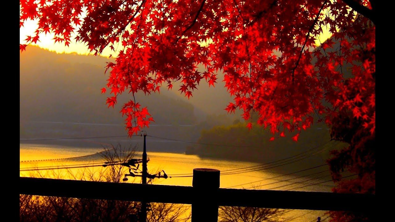Relaxing Music Stress Relief Love Songs Piano Instrumental Music Mel Landscape Wallpaper Autumn Landscape Autumn Leaves Wallpaper
