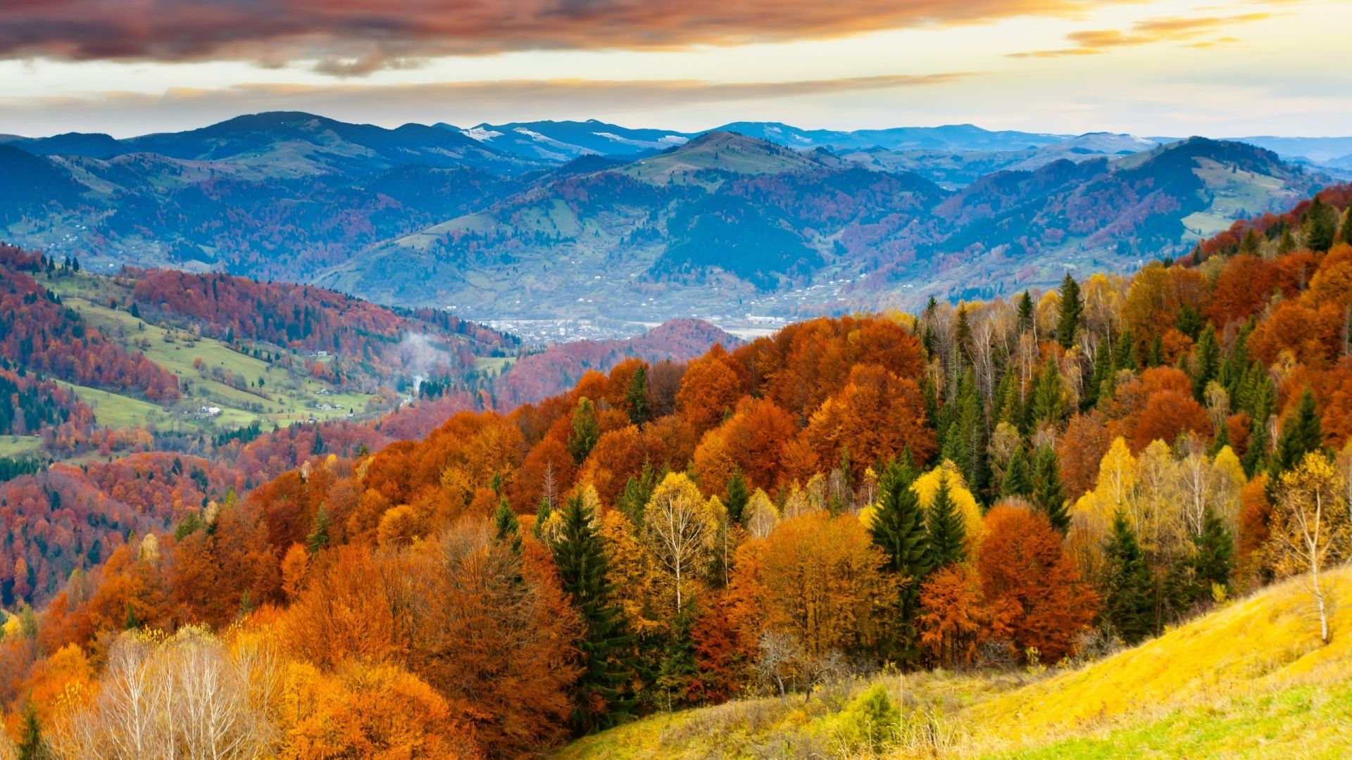 colorful forest mountain - autumn