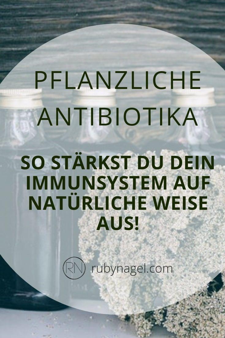 Photo of Natürliches Antibiotikum: 10 pflanzliche Antibiotika gegen Erkältung