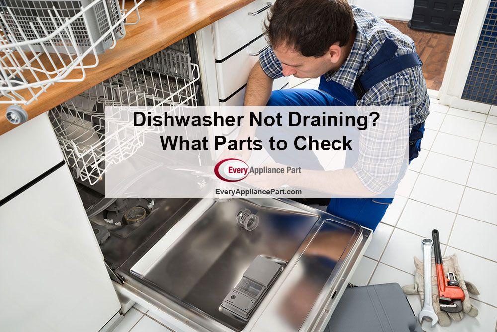 Dishwasher Not Draining What Parts To Check Dishwasher Not Draining Dishwasher Repair Dishwasher