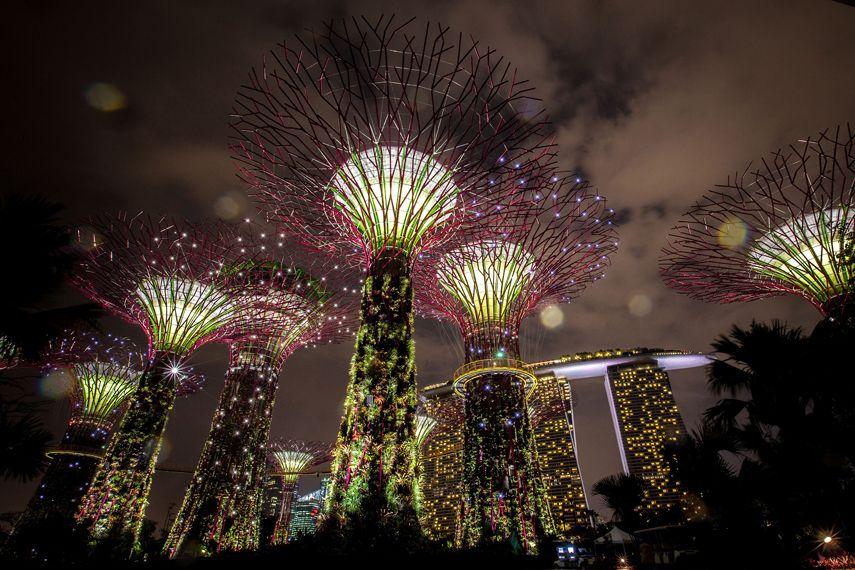 photos supertrees illuminate singapore sky singapore foodsingapore malaysiabay lightsgardens by the