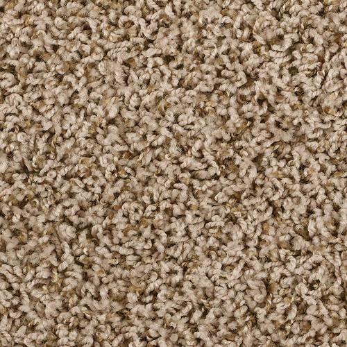 More Basement Ideas Shaw Jules Frieze Carpet 12ft Wide