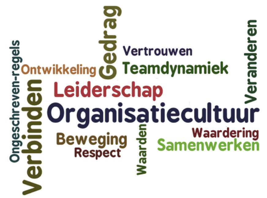 Citaten Leiderschap : Organisatiecultuur google zoeken mj veranderadvies