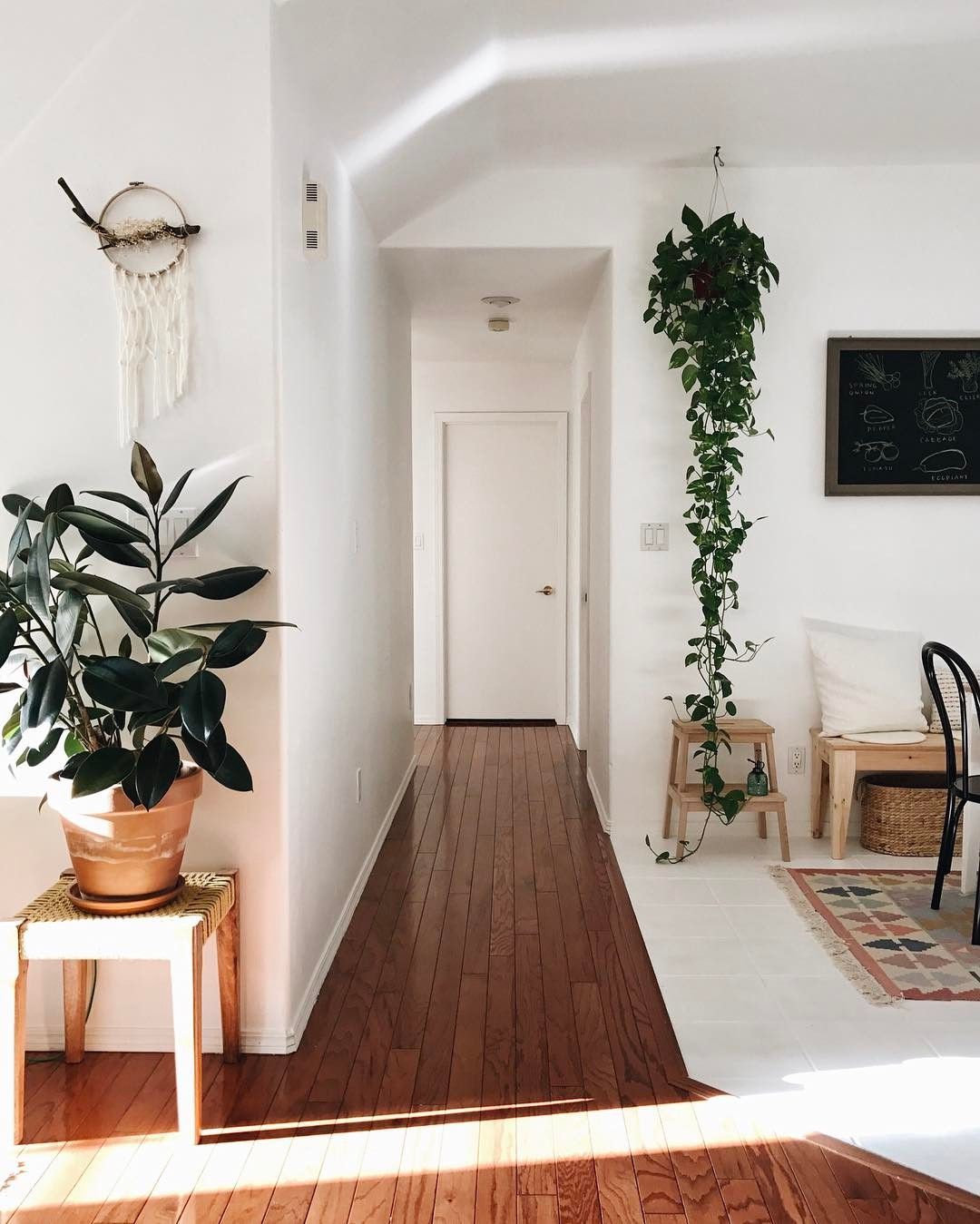 Bright and clean simple entryway with plants interior design
