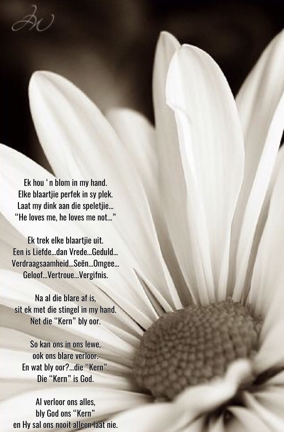 Pin by Elaine Niemand on Afrikaans Gebede   Afrikaans quotes
