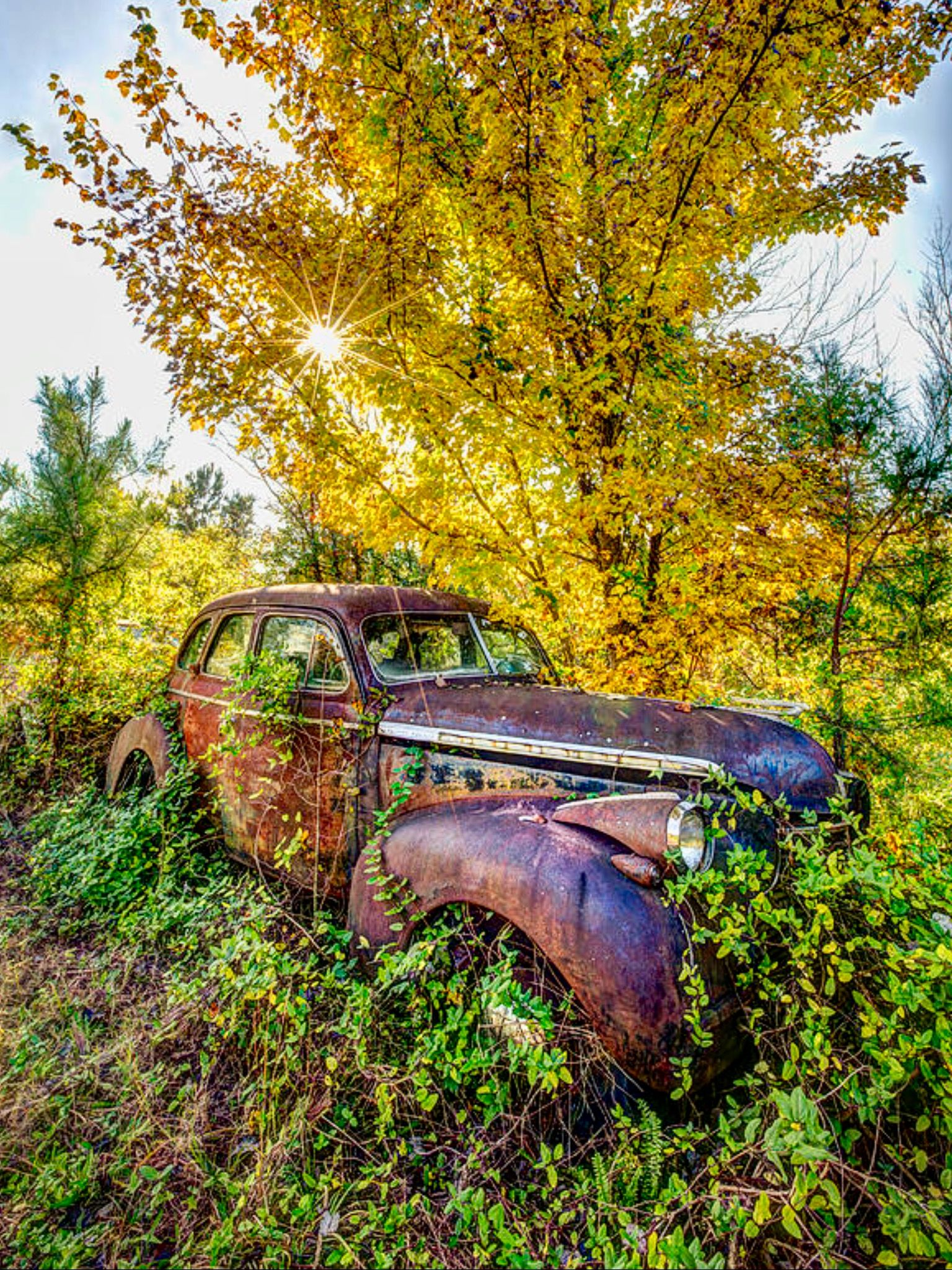 Vintage Car Is A Photograph By Debra And Dave Vanderlaan What A Treasure This Old Rusty Vintage Car Sits Under The Dawn Sun Old Cars Dream Cars Bmw Abandoned
